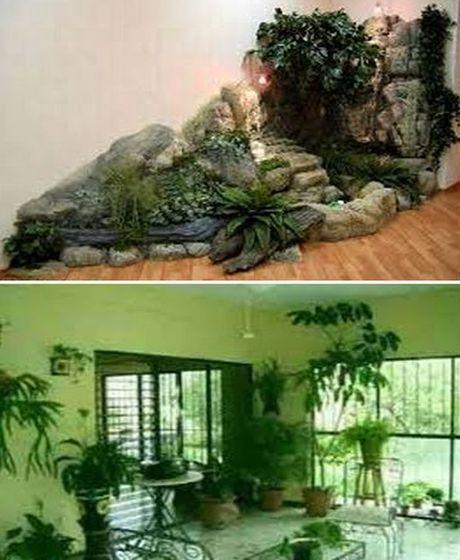 дизайн интерьера с комнатными цветами
