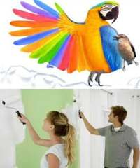 современные краски
